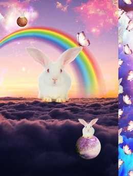 Paneler Rainbow Rabbit