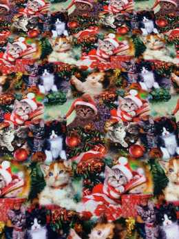 Christams cats